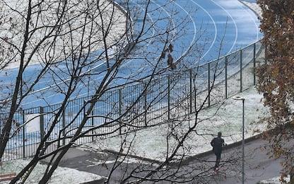 Varese, 53enne travolto e ucciso da un albero caduto per la neve