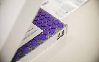 Foto shippers conservazione vaccino