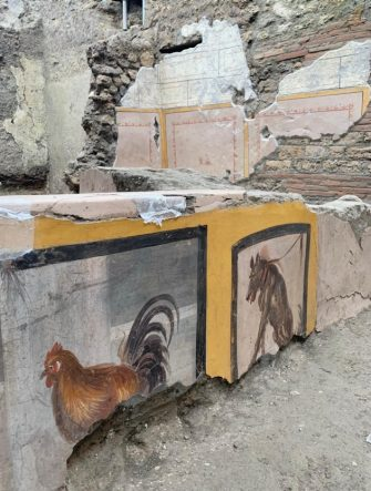 "A Parco Archeologico picture made available 26 December 2020 shows adetail of the almost intact environment of a Thermopolium in Pompeii, Italy.Two ducks hanging by the feet, a rooster, a dog on a leash, which look like they are painted in 3D. The almost intact environment of a Thermopolium, a street food shop, with dishes of all kinds, from snails to a sort of ""paella"", returns to light in Pompeii. A discovery, anticipates the director Osanna to ANSA, who ""returns an incredible photograph of the day of the eruption"", and opens up new studies on the life, uses and nutrition of the Pompeians, ""It will be an Easter gift for visitors"", announces. ANSA/PARCO ARCHEOLOGICO DI POMPEI  EDITORIAL USE ONLY NO SALES"