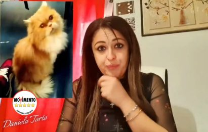 Ritrovato il gatto Grisù scomparso, interrogazione parlamentare M5S