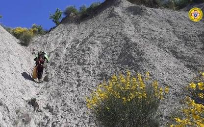 Sassuolo, trovate ossa di donna: forse resti di Paola Landini