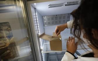 Un'operatrice sanitaria tira fuori una dose di vaccino in un ospedale di Catanzaro