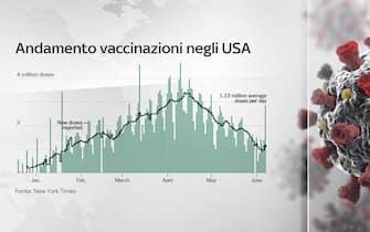 Grafiche coronavirus: l'andamento delle vaccinazioni negli Usa