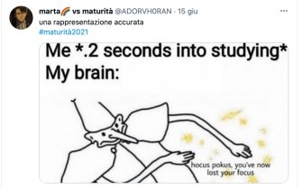 Meme per lo studio