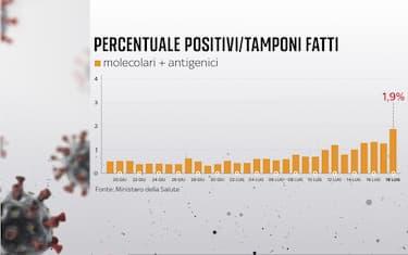 Grafiche coronavirus: sale tasso positività