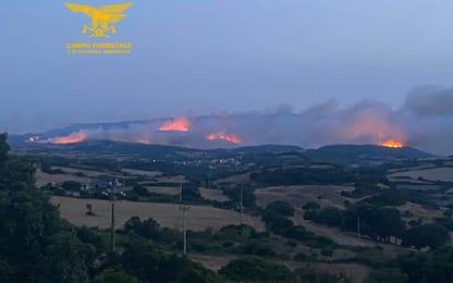 Sardegna, rogo nell'Oristanese: evacuazioni e Canadair in azione. FOTO