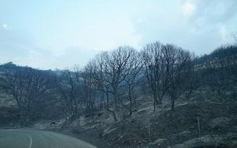 Foto Alessandro Tocco - LaPresse  25-07-2021 Cuglieri - Oristano -  Italia cronaca  Incendi Provincia di Oristano Nella foto: Cuglieri  Photo Alessandro Tocco - LaPresse  25 July 2021 Cuglieri - Oristano -  Italy news Sardinia fires - in Cuglieri  Nella foto: Cuglieri