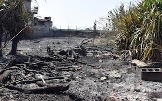 Oggi si contano i danni causati dai numerosi e vasti incendi che ieri hanno interessato il catanese, e in particolar modo la plaia. Le fiamme hanno coinvolto anche il Villaggio Azzurro situato a ridosso dell'oasi del Simeto.  ANSA/Orietta Scardino
