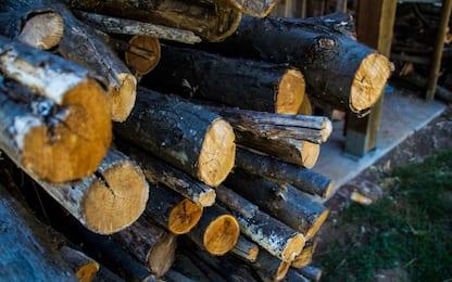 Ruba due quintali di legna, denunciato in provincia di Alessandria
