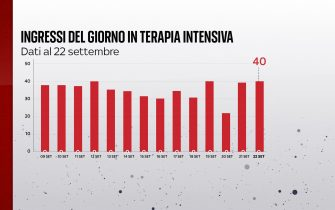 Grafiche coronavirus: gli ingressi del giorno in terapia intensiva