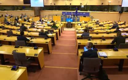 Gaffe di Giarrusso al Parlamento Ue: non parla in inglese. VIDEO