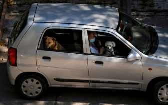 A woman wearing a face mask as a preventive measure against the spread of the coronavirus, COVID-19, sits on a car with her dogs, in Montevideo on March 24, 2020. (Photo by Eitan ABRAMOVICH / AFP) (Photo by EITAN ABRAMOVICH/AFP via Getty Images)