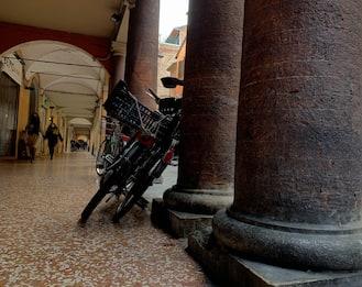 Reportage dall'Italia tricolore: Bologna