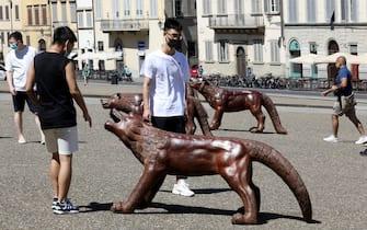 L'installazione dal titolo 'I lupi in arrivo' dell'artista cinese Liu in Pazza Pitti e in Piazza Santissima Annunziata a Firenze, 13 Luglio 2020. ANSA/CLAUDIO GIOVANNINI