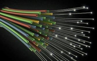 Cavi di fibra ottica