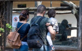 Una famiglia allo zoo