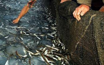 Pescatori durante una battuta