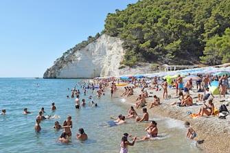 Turisti e vacanzieri locali  affollano le spiagge di Vignanotica nel Gargano, 21 agosto 2021. ANSA/ Franco Cautillo