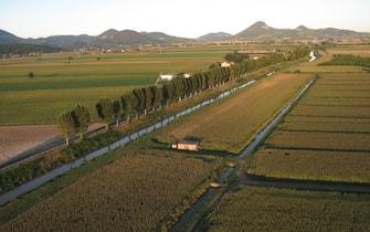 Campi coltivati in Italia