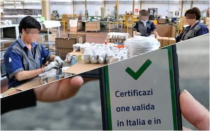 Green Pass, Cgia: 1 milione di lavoratori non ce l'ha, pochi controlli