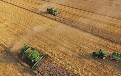 Crea, in agricoltura rilevanza manodopera straniera e trend cresce