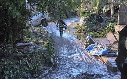 Coldiretti: da maltempo danni per 300mln di euro ad agricoltura