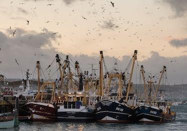 Al via negoziato rinnovo pescatori delle cooperative