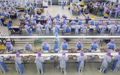 Sindacati, siglato rinnovo contratto della cooperazione alimentare