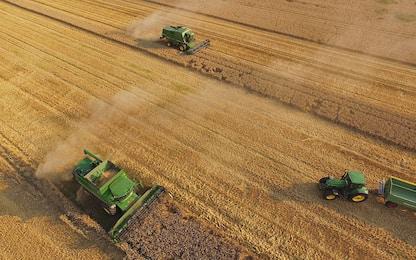 Contratti: sindacati, ok rinnovo cooperazione agricola