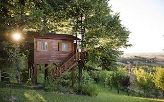 Aromantica Tree House in San Salvatore Monferrato Italy.