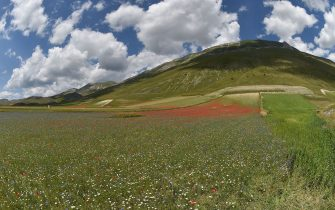 PERUGIA, ITALY - JULY 10:  A general view during Annual Blossom in Castelluccio on July 10, 2018 in Castelluccio di Norcia near Perugia, Italy.  (Photo by Giuseppe Bellini/Getty Images)
