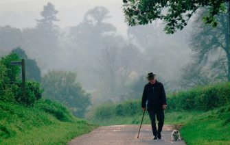 An old man walking his dog in a quiet country lane in  Wiltshire, England