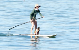 LOS ANGELES, CA - FEBRUARY 13: Helen Hunt is seen in Malibu on February 13, 2015 in Los Angeles, California.  (Photo by GONZALO/Bauer-Griffin/GC Images)