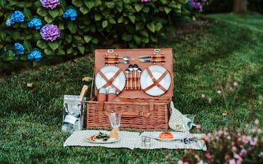 rsz_copertina_picnic