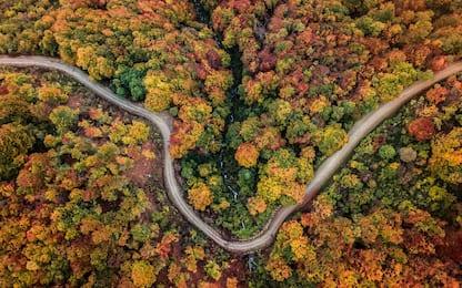 Foliage in Italia, i 30 posti più belli dove vivere l'autunno. FOTO