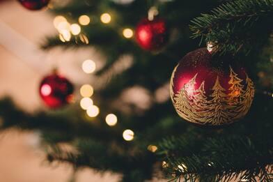 Albero di Natale, addobbi: tendenze e novità 2020. FOTO
