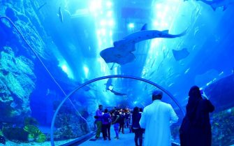 TOPSHOT - Tourists and locals visit the Dubai Mall aquarium in downtown Dubai on January 2, 2019. (Photo by GIUSEPPE CACACE / AFP)        (Photo credit should read GIUSEPPE CACACE/AFP via Getty Images)
