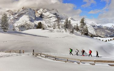 Hikers with snowshoes, snowy landscape, Platzwiese, Prags, Puster valley, Trentino-Alto Adige, Italy.