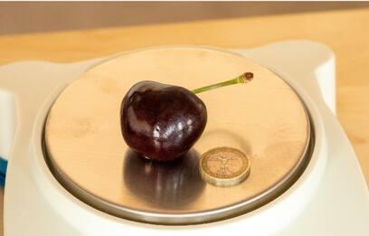 A Bologna la ciliegia da 26,45 grammi è da Guinness World Records
