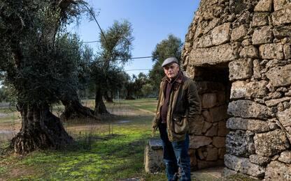 A Pasqua adotta un agricoltore e sostieni le tradizioni italiane. FOTO