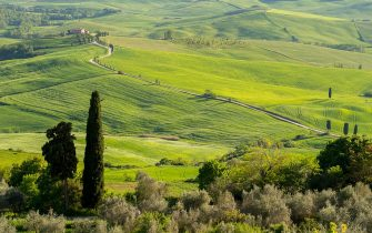 ITALY - 2015/05/04: View of the Val d'Orcia near Pienza in Tuscany, Italy with Italian cypress trees (Cupressus sempervirens) and gravel road going to a farm house. (Photo by Wolfgang Kaehler/LightRocket via Getty Images)