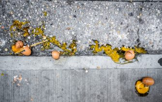 Broken eggs on the sidewalk in New York on Monday, April 6, 2020. Wholesale egg prices have shot up, tripling, due to consumer's demand for the product while remaining home during the COVID-19 pandemic. (ÂPhoto by Richard B. Levine)