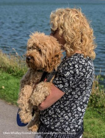 The Comedy Pet Photography Awards 2021 Ken Whalley Hayle United Kingdom Title: Freddie & Alison Description: Freddie's the one with the brown nose. Animal: Freddie the Cockapoo Location of shot: Hayle Copperhouse Estuary