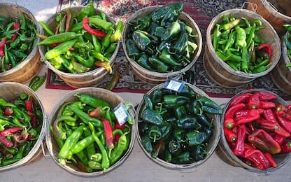 Coltivare i peperoncini in vaso sul balcone: quali scegliere