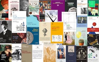Romanzi, saggi, novità: i libri da leggere consigliati da Sky TG24