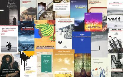 Dai romanzi ai saggi, i consigli di lettura di Sky TG24 per l'estate