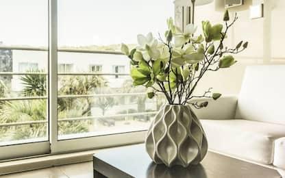 9 piante contro l'inquinamento che depurano l'aria a casa o in ufficio