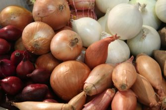 BERLIN, GERMANY - JANUARY 19:  Onions and shallots lie on display at the 2018 International Green Week (Internationale Gruene Woche) agricultural trade fair on January 19, 2018 in Berlin, Germany. Food for humans made from insects and worms is a growing trend. The International Green Week is among the world's biggest agricultural trade fairs and brings together agriculture, food, nutrition and horticulture. It is open to the public from Janaury 19-28.  (Photo by Sean Gallup/Getty Images)