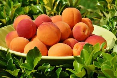 Dieta, le regole per dimagrire con la frutta