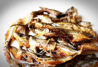 Frittura pesce azzurro